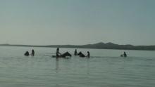 lake-csoportos